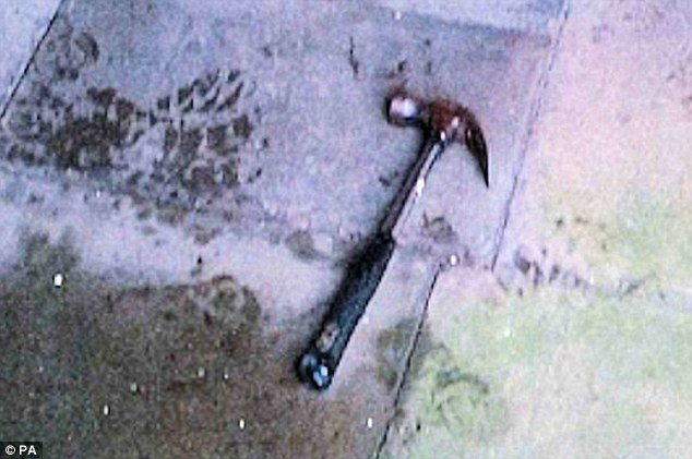 Pictured: The hammer used by Piruz during his attack on two police officers in Sussex