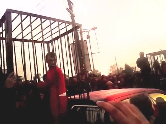 Trapped: A terrified Kurdish prisoner looks out from his cage at a mob of jeering militants in the horrific scene in Hawija
